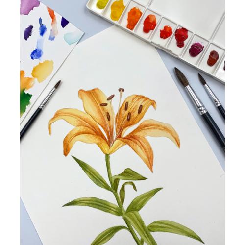 Watercolor Art Set, 19 pcs